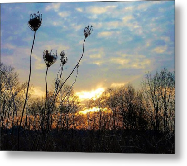 Waiting For The Sun Metal Print