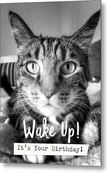 Wake Up It's Your Birthday Cat- Art By Linda Woods Metal Print