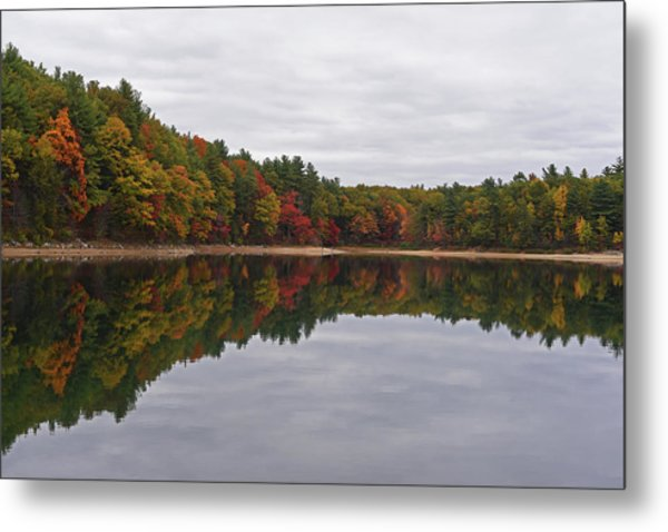 Walden Pond Fall Foliage Concord Ma Reflection Trees Metal Print