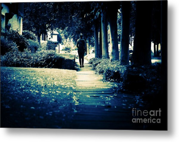 Walking A Lonely Path Metal Print