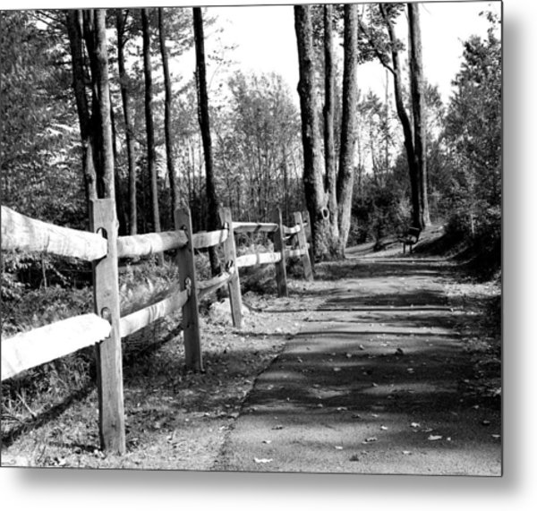 Metal Print featuring the photograph Walkway by Rick Morgan