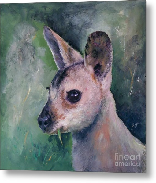 Wallaby Grazing Metal Print