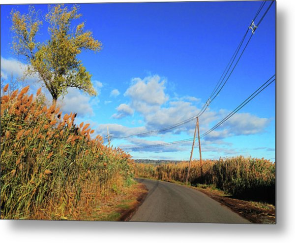 Wanderer's Way Metal Print