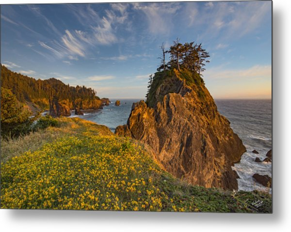 Warm And Peaceful Coast Metal Print by Leland D Howard