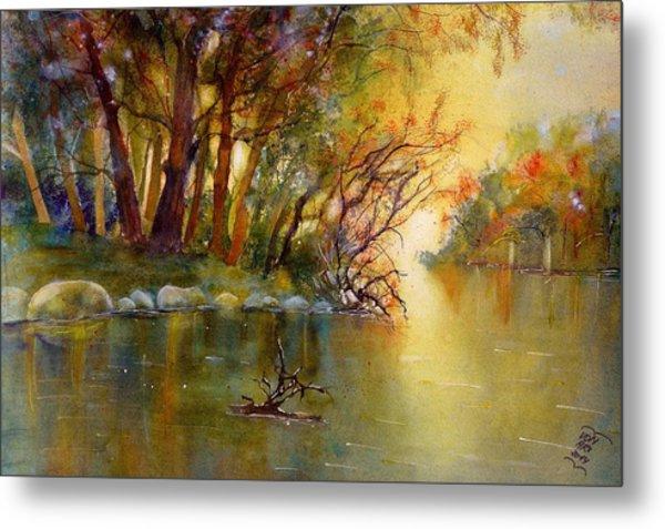 Warm Autumn Light Over The River Rhein Metal Print