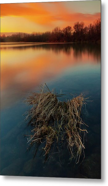 Metal Print featuring the photograph Warm Evening by Davor Zerjav