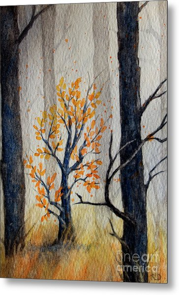 Warmth In Winter Metal Print