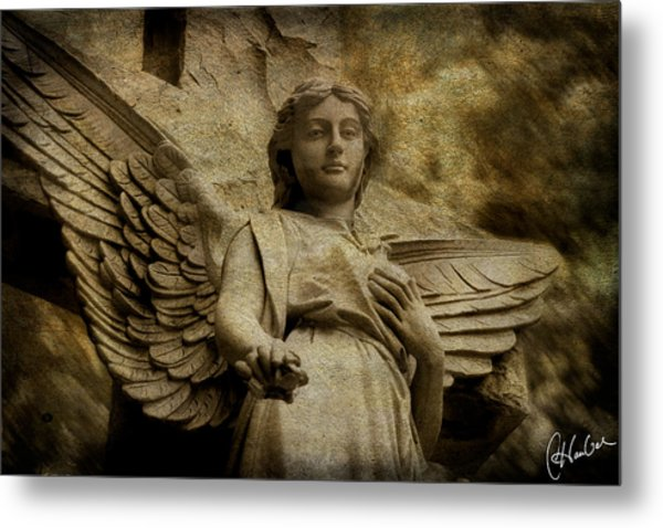 Watching Over Us Metal Print by Christine Hauber