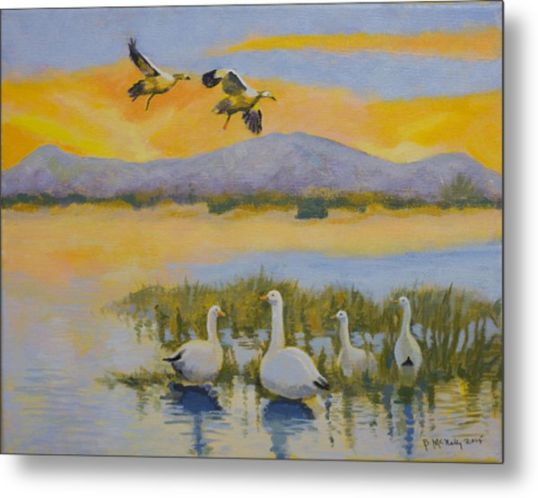 Water Fowl, Sutter Buttes Metal Print