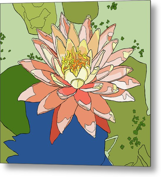 Water Lily And Duck Weed Metal Print