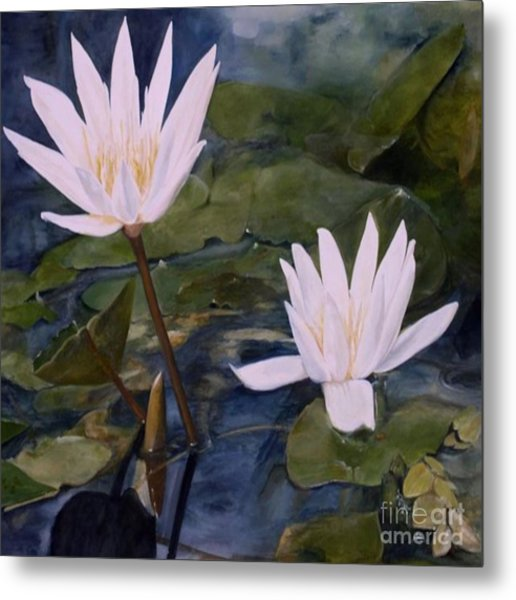 Water Lily At Longwood Gardens Metal Print