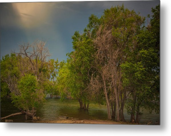 Water Refuge Metal Print
