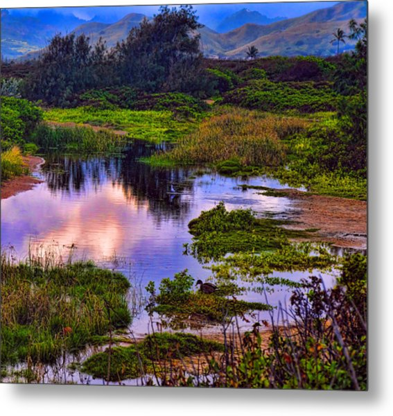 Water Scene Beauty 3 Metal Print