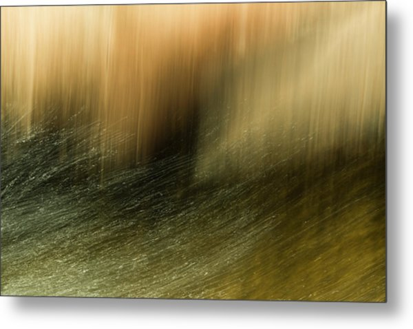 Metal Print featuring the photograph Water Tresses by Deborah Hughes