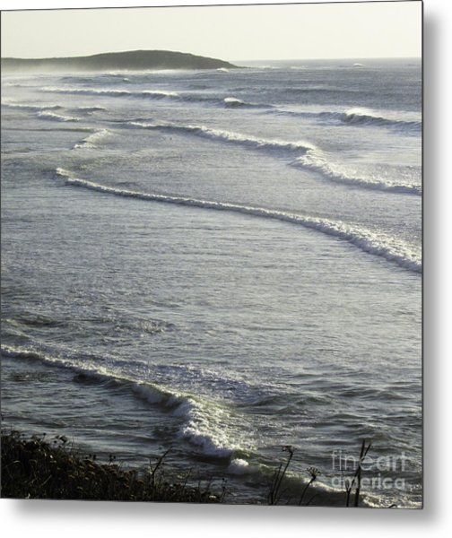 Water World Metal Print