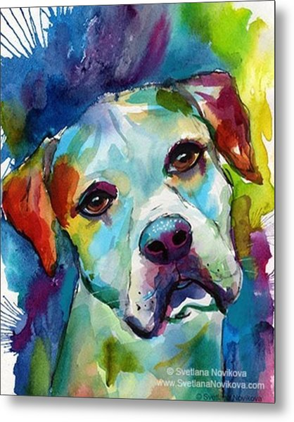 Watercolor American Bulldog Painting By Metal Print
