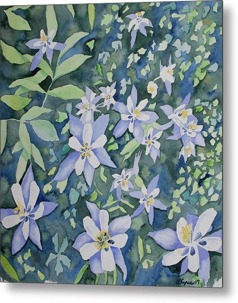 Watercolor - Blue Columbine Wildflowers Metal Print