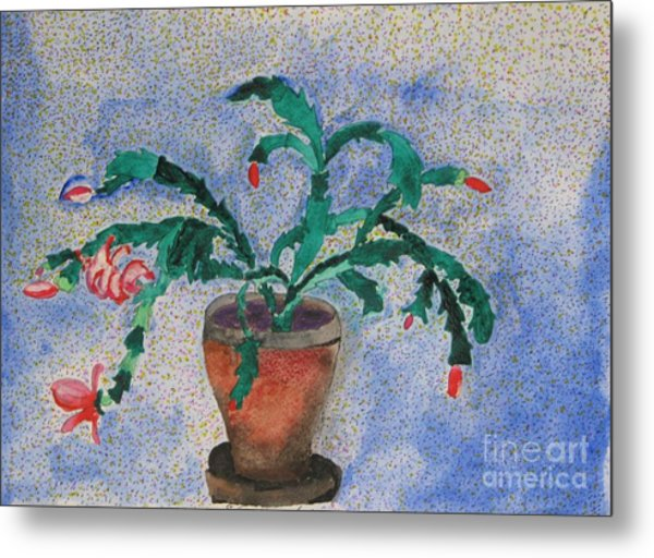 Watercolor Christmas Cactus First Bloom Metal Print by James SheppardIII