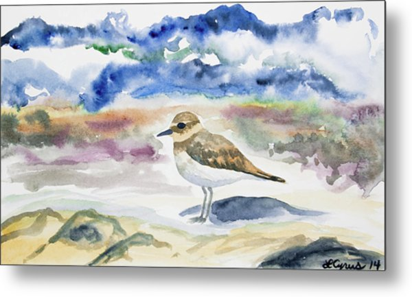 Watercolor - Double-banded Plover On The Beach Metal Print