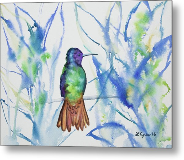 Watercolor - Golden-tailed Sapphire Metal Print