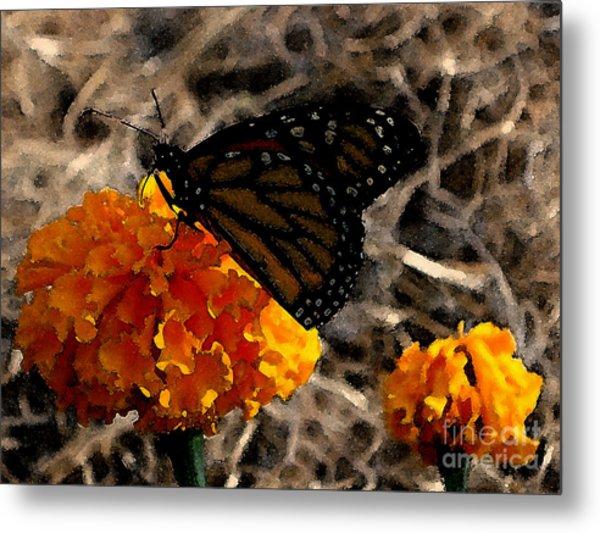 Watercolor Monarch Metal Print by PJ  Cloud