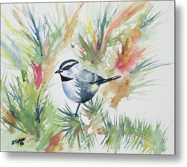 Watercolor - Mountain Chickadee And Pine Metal Print