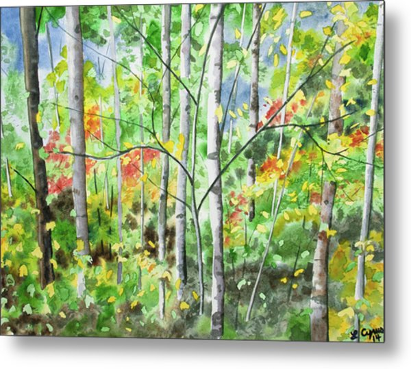 Watercolor - Northern Forest Metal Print
