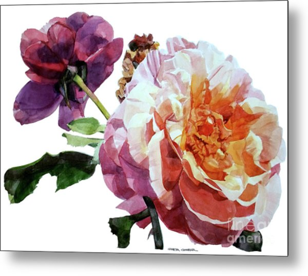Watercolor Of Two Roses In Pink And Violet On One Stem That  I Dedicate To Jacques Brel Metal Print