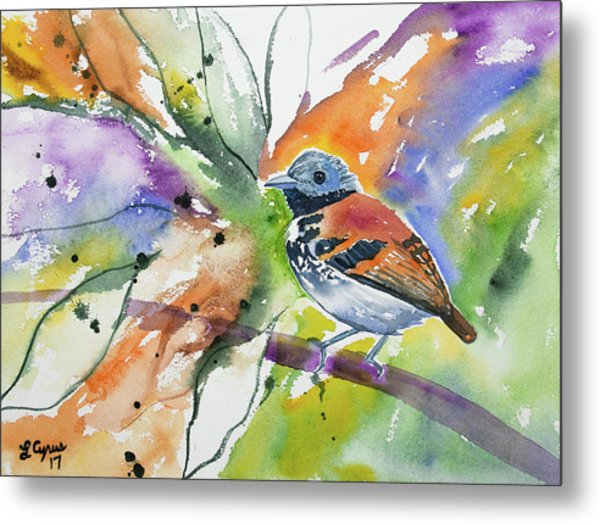 Watercolor - Spotted Antbird Metal Print