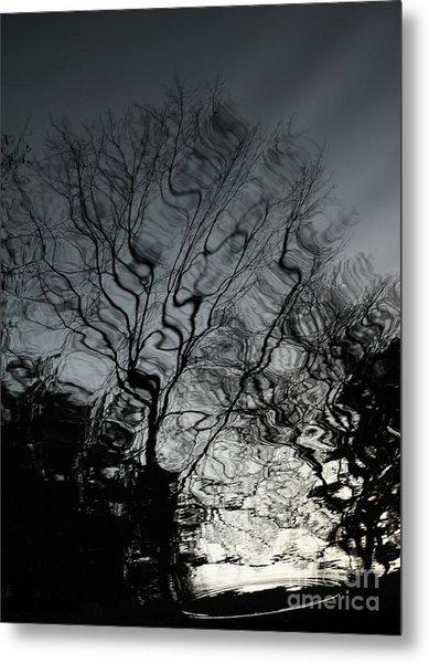 Watereflct4 Metal Print