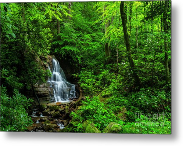 Waterfall And Rhododendron In Bloom Metal Print