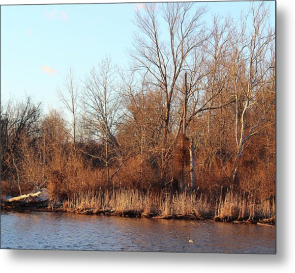 Northeast River Banks Metal Print