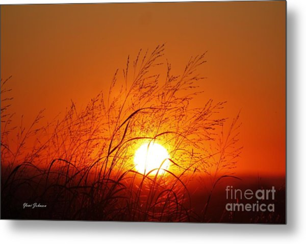 Waving Sun Metal Print