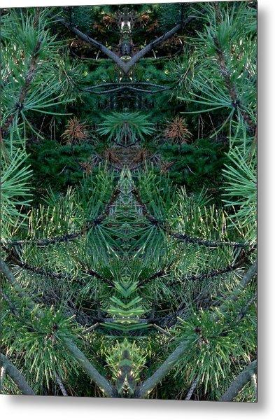 We Live In The Pines Metal Print by Marilynne Bull