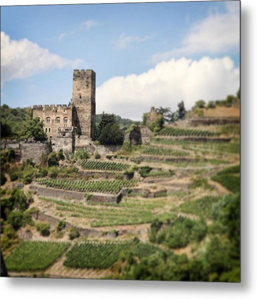Rhine River Castle And Winery Metal Print