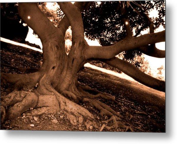 We Would -- Screaming Trees Metal Print