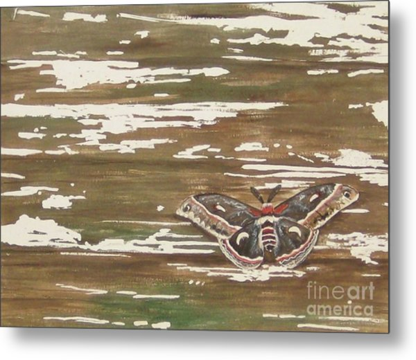 Weathered Metal Print by Carla Dabney
