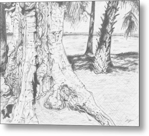Weathered Trees Metal Print