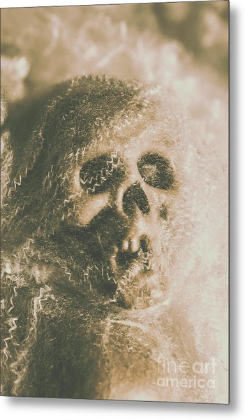 Webs And Dead Heads Metal Print