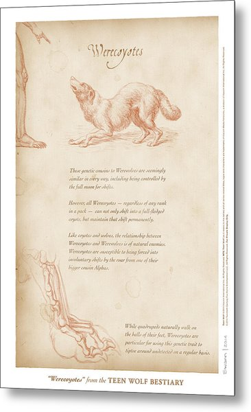 Werecoyotes Metal Print