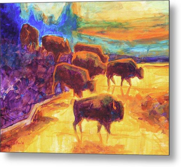 Western Buffalo Art Bison Creek Sunset Reflections Painting T Bertram Poole Metal Print