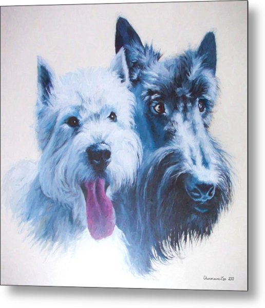Westie And Scotty Dogs Metal Print