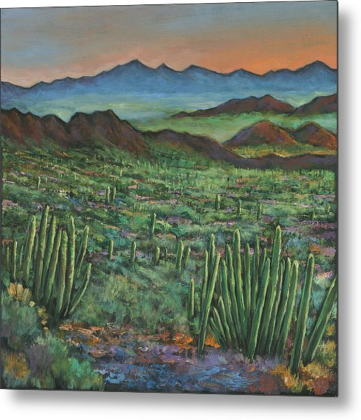 Westward Metal Print