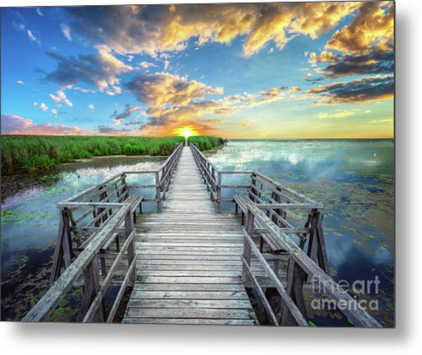Wetland Marsh Sunrise Treasure Coast Florida Boardwalk A1 Metal Print