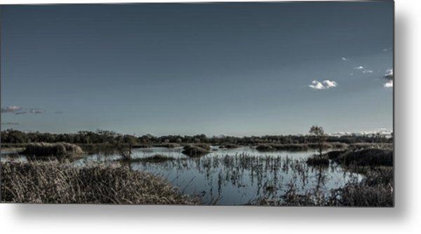 Wetlands Desaturated  Metal Print