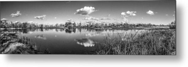 Wetlands Panorama Monochrome Metal Print