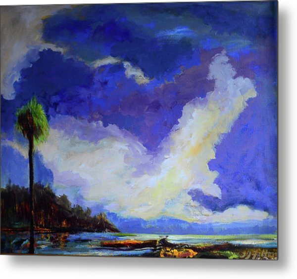 Wetlands Sky  Metal Print