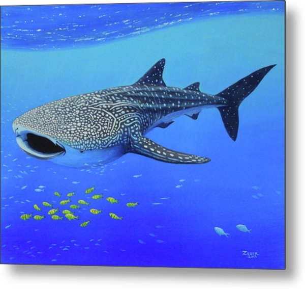 Whale Shark Metal Print by James Zeger