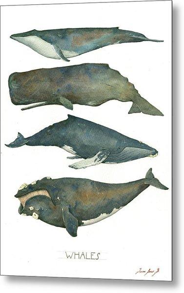 Whales Poster Metal Print