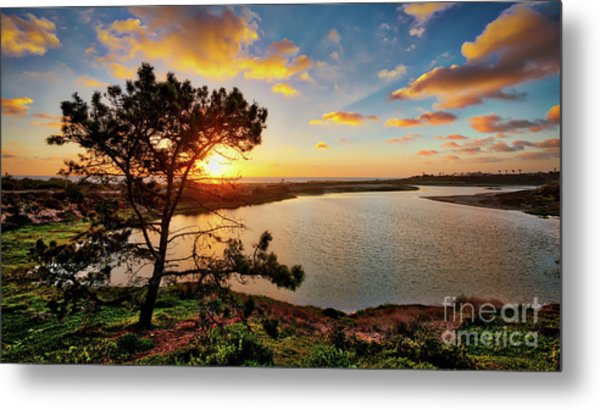 What A Glow At The Batiquitos Lagoon Metal Print